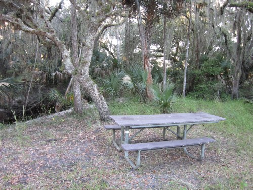 Another Picnic Area By The Water, Three Lakes Wildlife Management Area