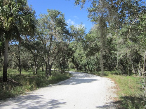 Boat Launch Road, Three Lakes Wildlife Management Area