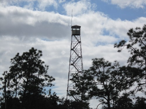 Fire Tower, Three Lakes Wildlife Management Area