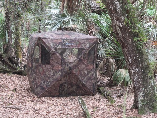 Hunting Tent Next to Trail, Three Lakes Wildlife Management Area