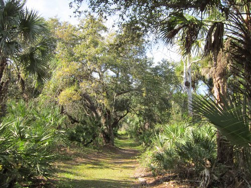 Nice Trail, Donald B. Moore Preserve