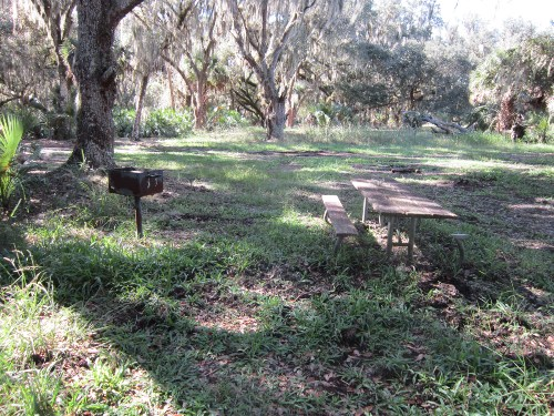 Small Picnic Area with Grill, Three Lakes Wildlife Management Area