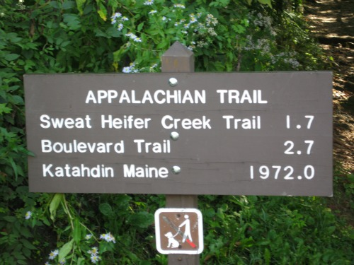 Appalachian Trail, great smoky mountains national park