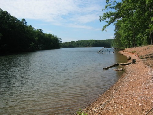 Badin Lake, Uwharrie National Forest