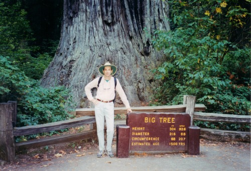 Joe in Front of Big Tree, Redwoods National Park