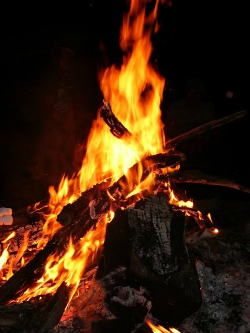 Be Careful With Camp Fires, Uwharrie National Forest