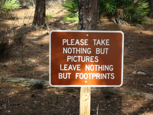 Good Advice!, lake kissimmee state park