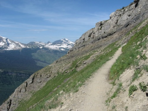 Highline Trail In Glacier National Park, Waterton Lakes National Park