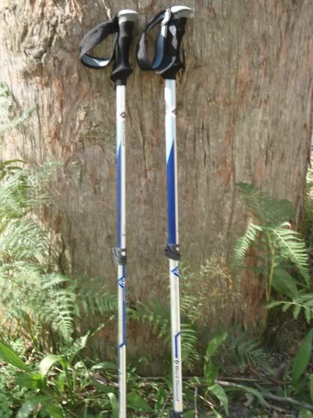 Hiking Poles, backpacking for dummies