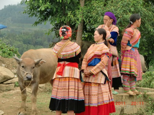 Mae Hong Son Loop, Hill Tribe People