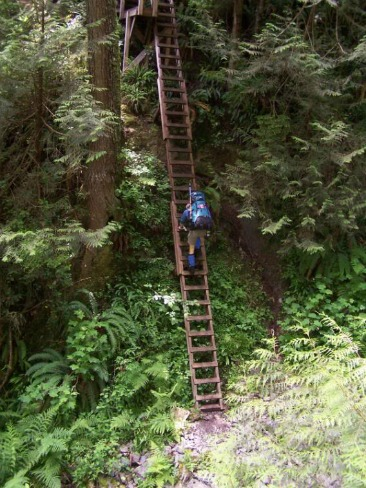 Climb Ladders, West Coast Trail Backpacking