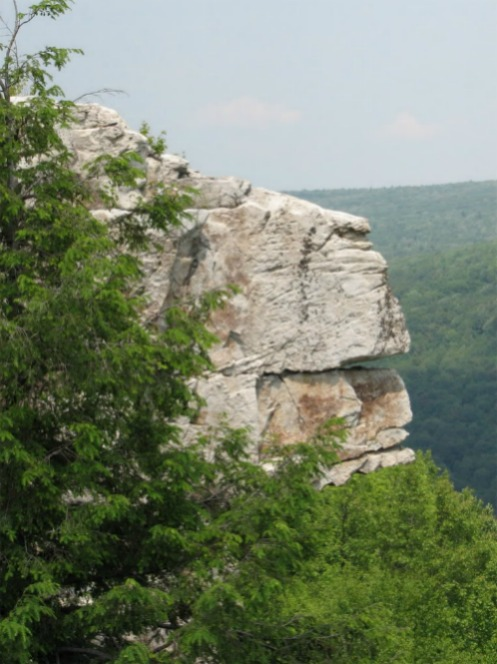 Lion's Head Rock, Dolly Sods Wilderness