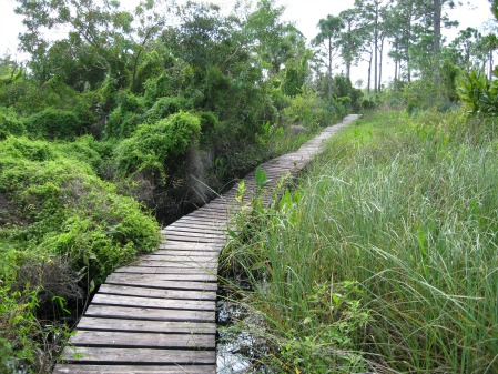 Long Wooden Bridge, jonathan dickinson state park