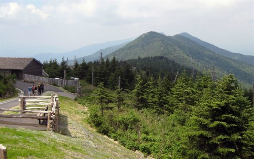 Mt. Mitchell Trail, Black Mountain Campground