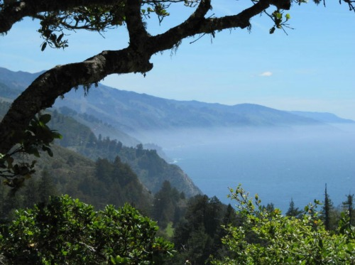 View From Nepenthe, Backpacking Big Sur