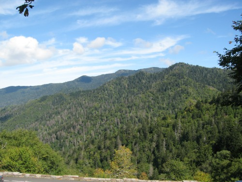 Nice Mountain, great smoky mountains national park