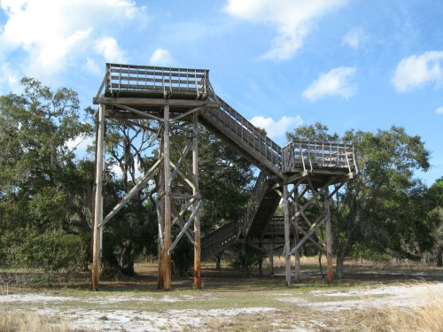 Observation Tower, lake kissimmee state park