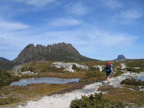 The Overland Track, backpacking australia