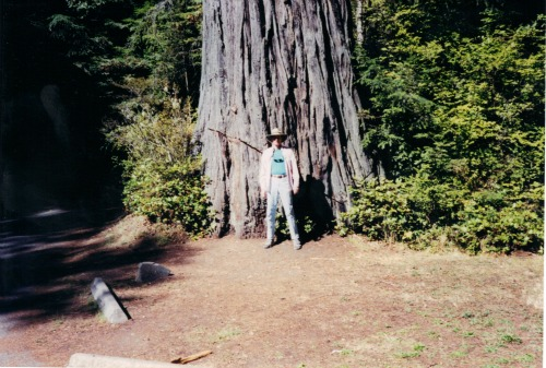 Joe in Front of Redwood Tree, Redwoods National Park