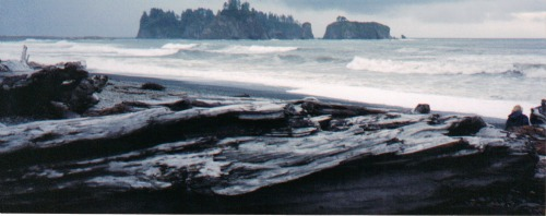 Small Islands, olympic national park