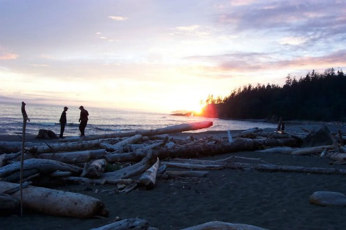 Beautiful Pacific Sunsets, West Coast Trail Backpacking