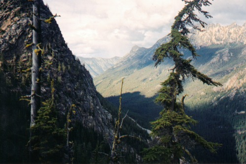View from the Pass, north cascades national park